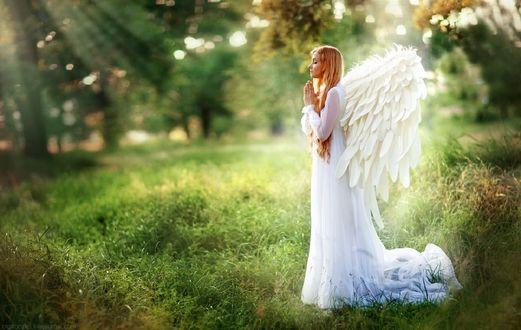 Обои Девушка в белом платье в образе ангела стоит на зеленой траве, фотограф Boiko Olha