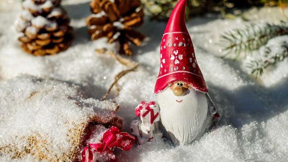 Обои Гномик в колпаке стоит на снегу, где лежат шишки и еловые ветки