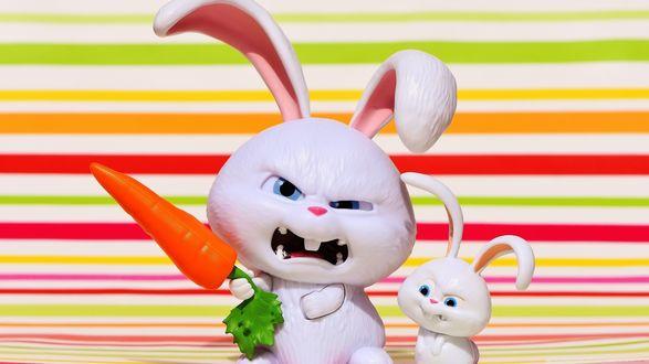 Обои Снежок с крольчонком, мультик The Secret Life of Pets (2016) / Тайная жизнь домашних животных