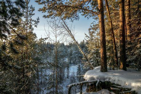 Обои Зимняя природа на закате, фотограф Анатолич