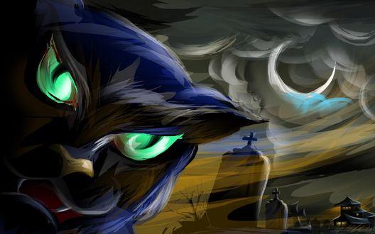 Обои Черная кошка с зелеными глазами на Хэллоуин