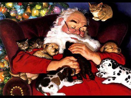 Обои Санта Клаус спит в кресле в окружении щенков и котят