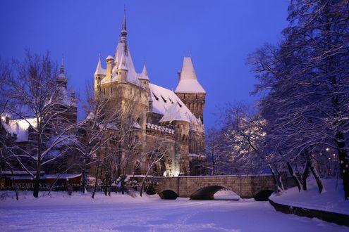 Обои Готический замок в снегу среди деревьев