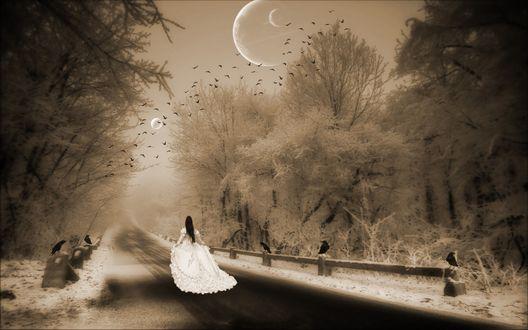 Обои Девушка в белом платье бежит по дороге под тремя лунами, мимо воронов