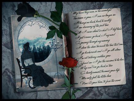 Обои Готическая девушка у зеркала мечтает с черной и красной розой в дневнике