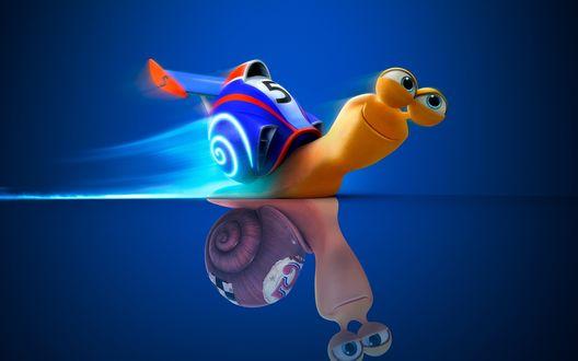 Обои Улитка Турбо с номером пять, с одноименного мультфильма Turbo