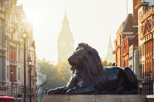 Обои Скульптура лежащего каменного льва на фоне Бик-Бена в Лондоне, Англия