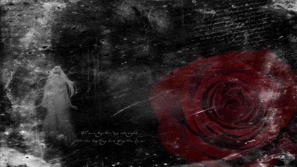 Обои Красная роза и девушка-приведение во мраке