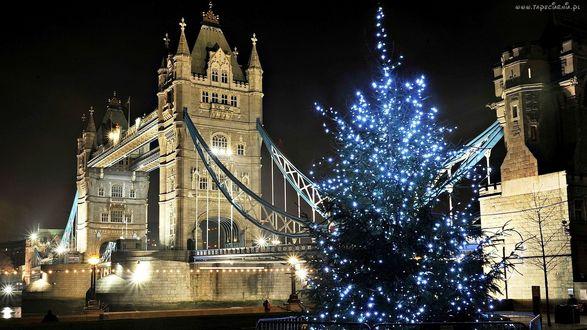 Обои Рождественская елка с огнями возле Тауэрского моста через Темзу