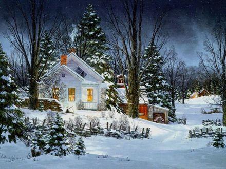 Обои Белый домик среди елок зимой
