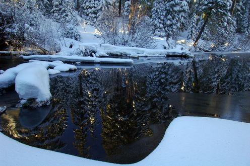Обои Деревья в снегу отражаются в зимнем пруду