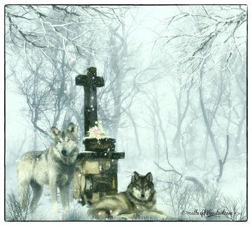 Обои Волки возле креста зимой на снегу