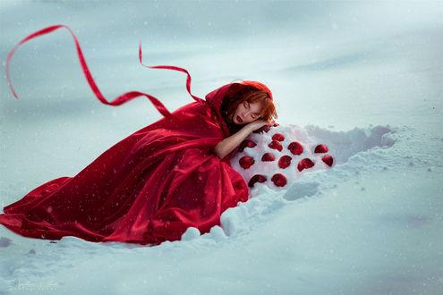 Обои Девушка в красном плаще лежит на снегу перед красными яблоками, фотограф Нуруллаева Яночка