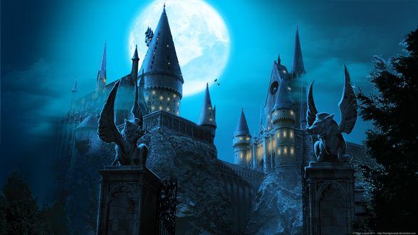 Обои Замок Хогвардс из Гарри Поттера ночью под луной