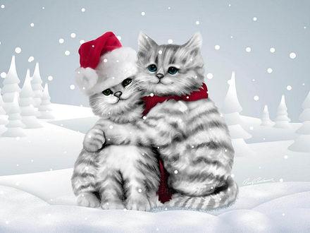 Обои Бело-серые, полосатые котята под падающим снегом