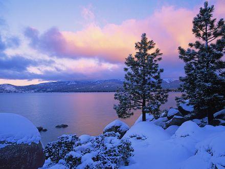 Обои Ели на каменистом берегу зимнего озера