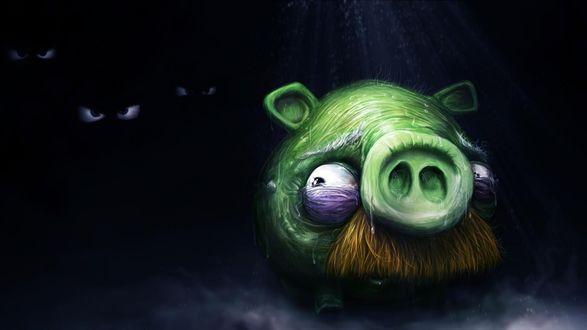 Обои Свинья боится темноты, обои на тему игры Angry birds / Злые птички