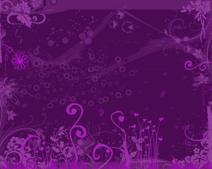 Обои Лиловые обои с узорами в виде цветов