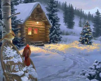 Обои Птицы сидят около дома и наряженной елки перед Рождеством