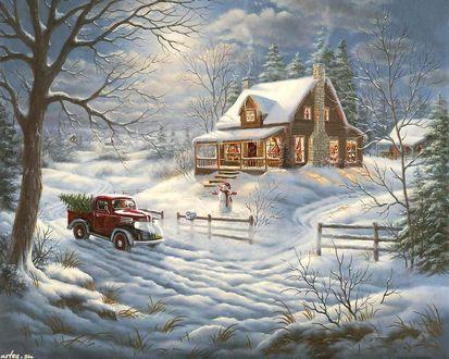 Обои Автомобиль привез елку в дом на Рождество