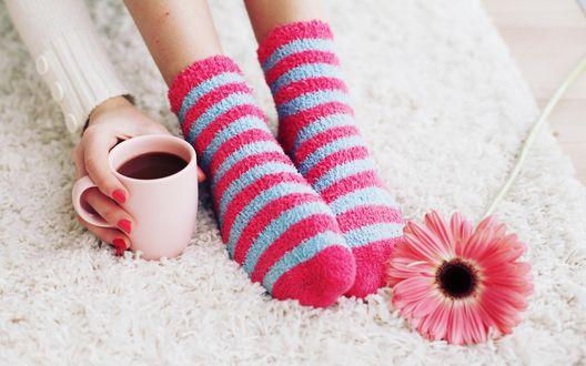 Обои Ножки девушки в полосатых носочках и рука с кружкой кофе на мягком коврике, рядом лежит розовая гербера
