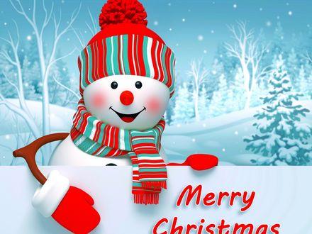 Обои Снеговик в шапочке, рукавичках и шарфике с плакатом на котором написано (Merry Christmas / Веселого Рождества)
