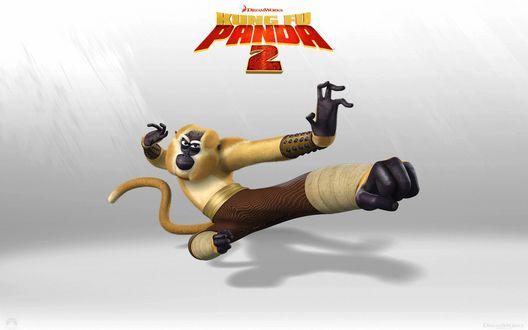 Обои Обезьяна - персонаж компьютерного мультипликационного фильма Кунг-фу панда 2 / Kung Fu Panda 2