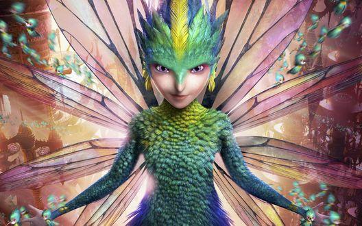 Обои Зубная Фея - персонаж полнометражного анимационного фильма Хранители снов / Rise of the Guardians