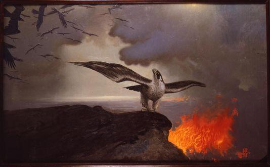 Обои Сокол на скале на фоне пожара, by Константин Васильев