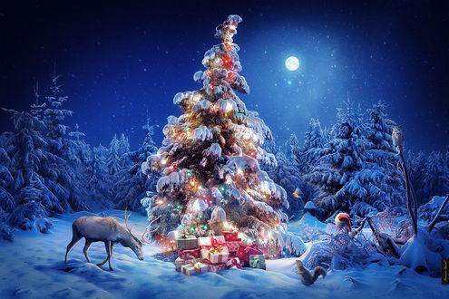Обои Наряженная елка с подарками в лесу, вокруг которой гуляют лось и белка