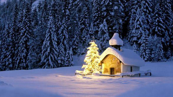Обои Светящийся домик и елка рядом