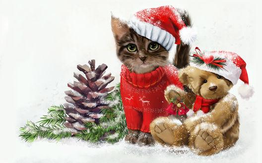 Обои Кот и игрушечный мишка в новогодних колпаках, by Kajenna