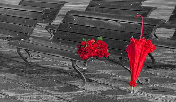 Обои Красный зон и букет роз на скамейке под дождем