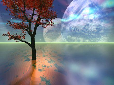 Обои Дерево с красными листьями растет в воде, на фоне неба с голубыми планетами