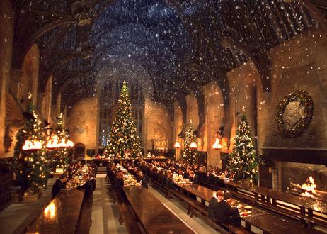Обои Рождество в мире Гарри Поттера. Дети собрались за праздничным столом возле елки