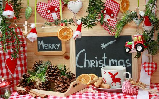 Обои Нарезанные апельсины и орехи около новогодней кружки с оленем (Merry Christmas)