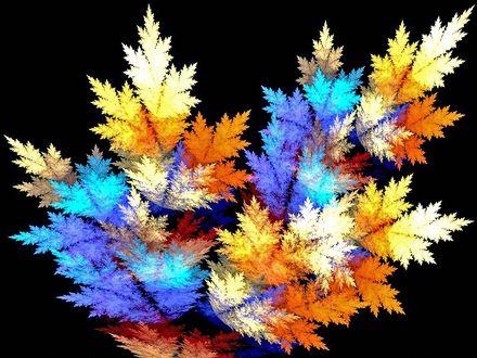 Обои Цветные листья на черном фоне