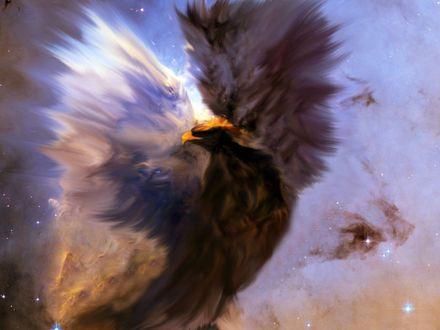 Обои Орел в небе из огня, дыма и пыли
