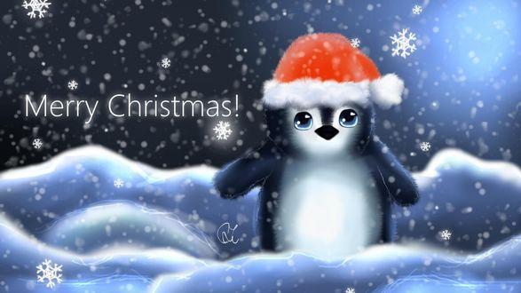 Обои Пингвиненок в новогодней шапочке под падающим снегом (Merry Christmas! / Веселого Рождества)