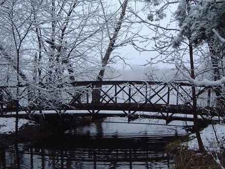 Обои Мост через речку зимой среди деревьев