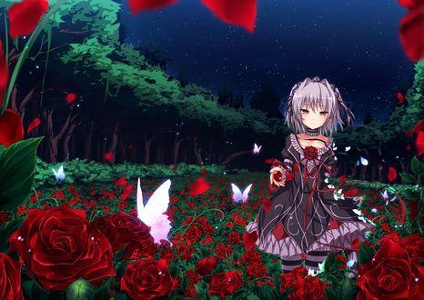Обои Девочка стоит среди красных роз в окружении белых бабочек