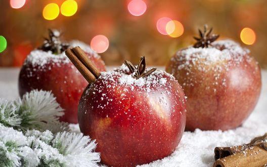 Обои Яблоки с корицей и бадьяном лежат на снегу возле еловой ветки на фоне бликов