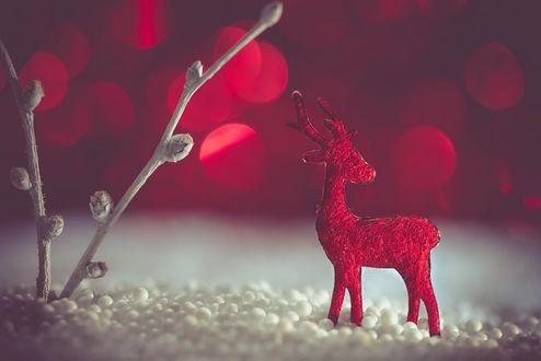 Обои Игрушечный олень стоит в шариках пенопласта, имитирующих снег, куда воткнуты две веточки, похожие на дереве