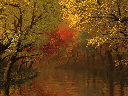 Обои Деревья с осенней листвой у лесной реки