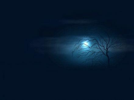 Обои Сухое дерево на фоне ночного неба с пробивающимся сквозь туман светом луны