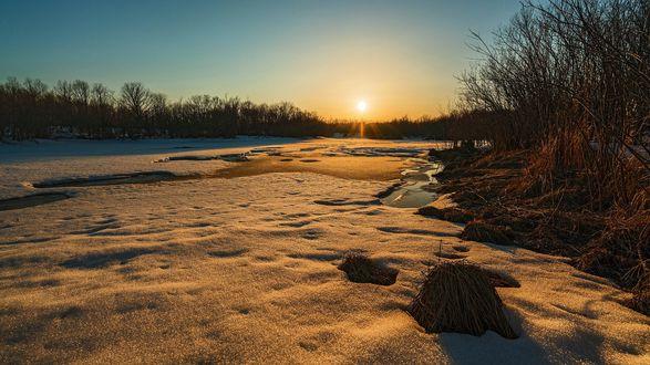 Обои Зимний закат, фотограф Николай Рощин