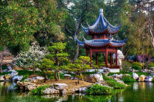 Обои Японский сад в небольшом городке Сан-Марино, Лос-Анджелес, Калифорния