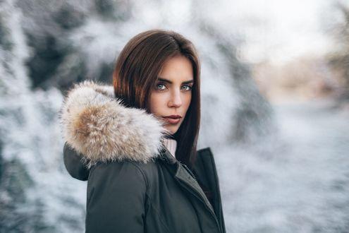 Обои Симпатичная девушка в зимней корточке, фотограф Martin Kühn