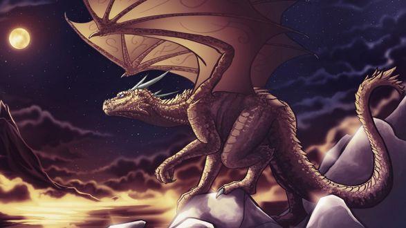 Обои Дракон в полнолуние смотрит на небо