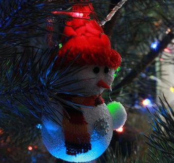 Обои Снеговик на новогодней елке, фотограф Daria Kalinina